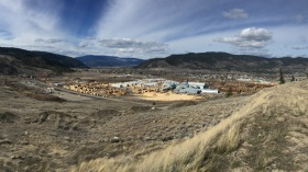 Sawmill waste avoids CO2 discharge at one of North America's largest biomass plants